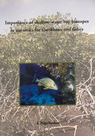 ❣️? Importance of shallow-water bay biotopes as nurseries for Caribbean reef fishes – I. Nagelkerken